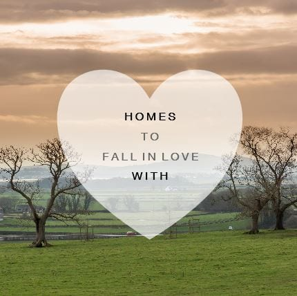 Homes to Fall in Love With